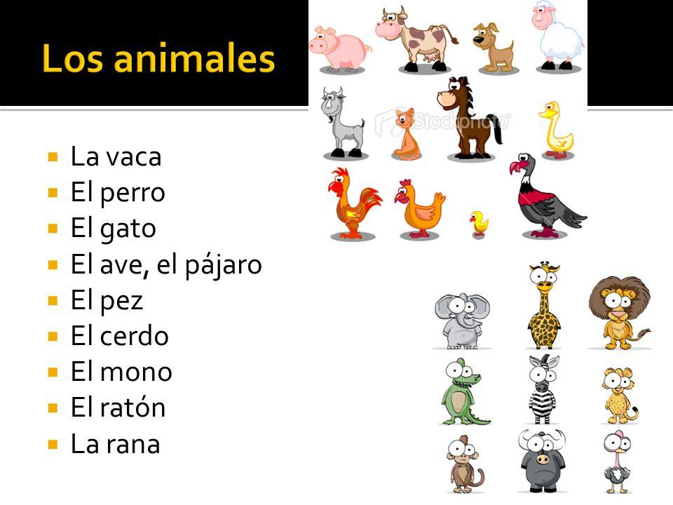 Los animales La vaca El perro El gato El ave, el pájaro El pez
