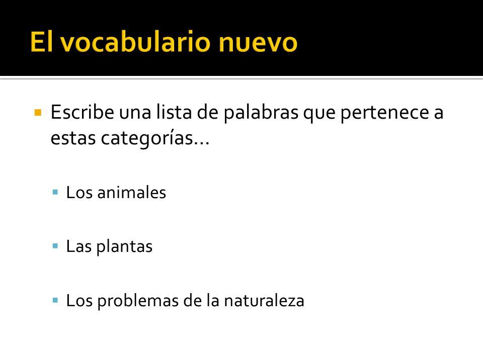El vocabulario nuevo Escribe una lista de palabras que pertenece a estas categorías… Los animales.