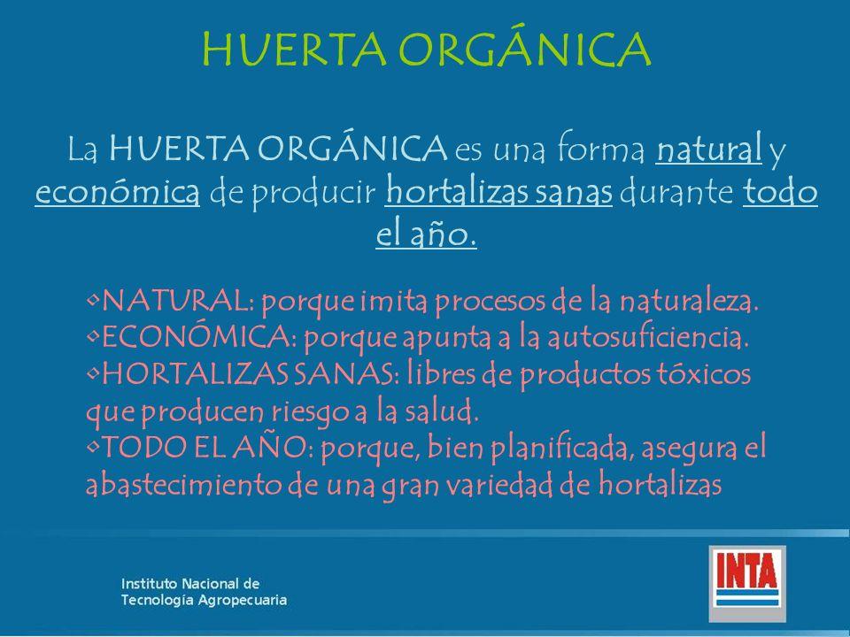 HUERTA ORGÁNICA La HUERTA ORGÁNICA es una forma natural y económica de producir hortalizas sanas durante todo el año.