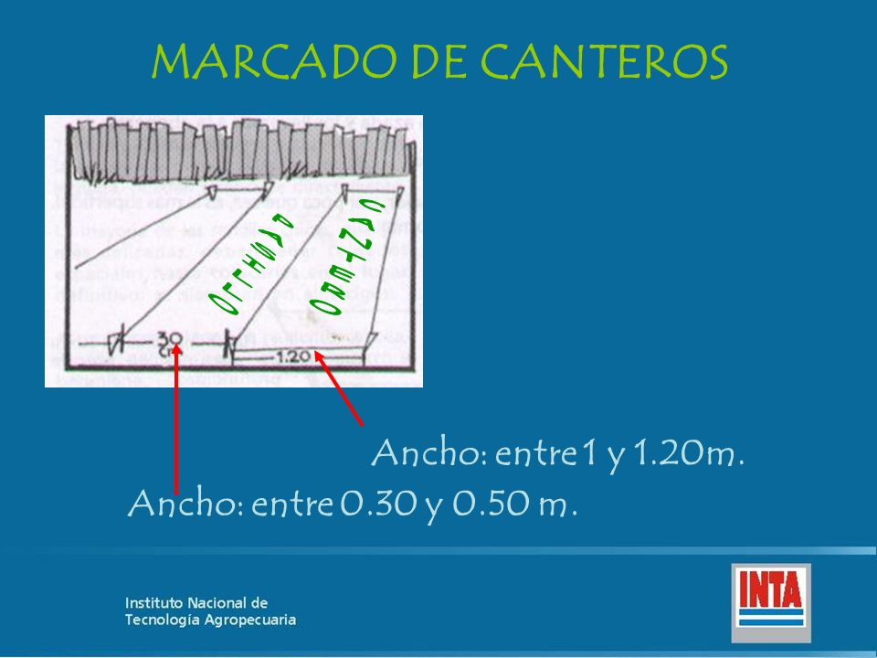 MARCADO DE CANTEROS Ancho: entre 1 y 1.20m.