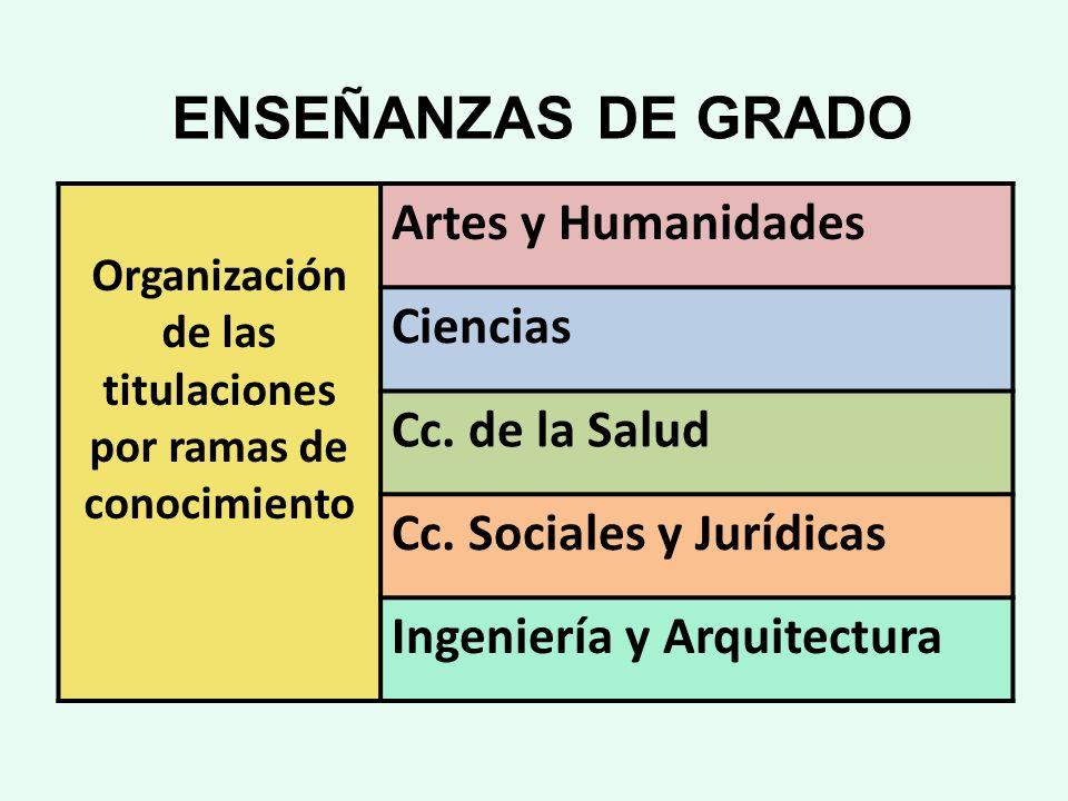 Organización de las titulaciones por ramas de conocimiento