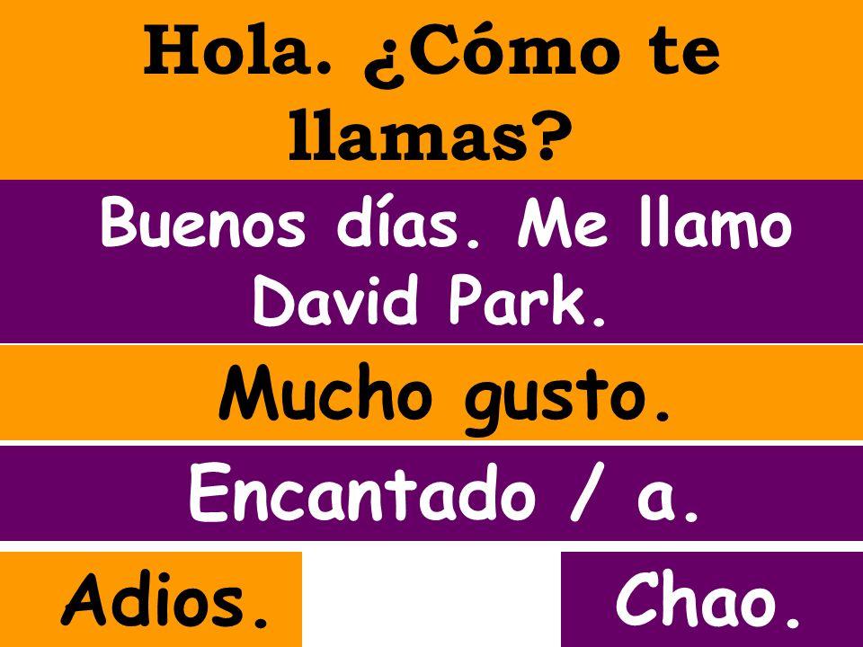 Buenos días. Me llamo David Park.