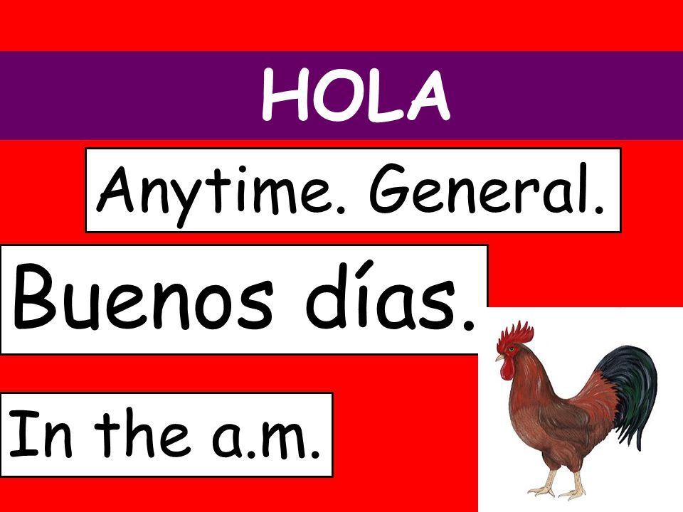 HOLA Anytime. General. Buenos días. In the a.m.