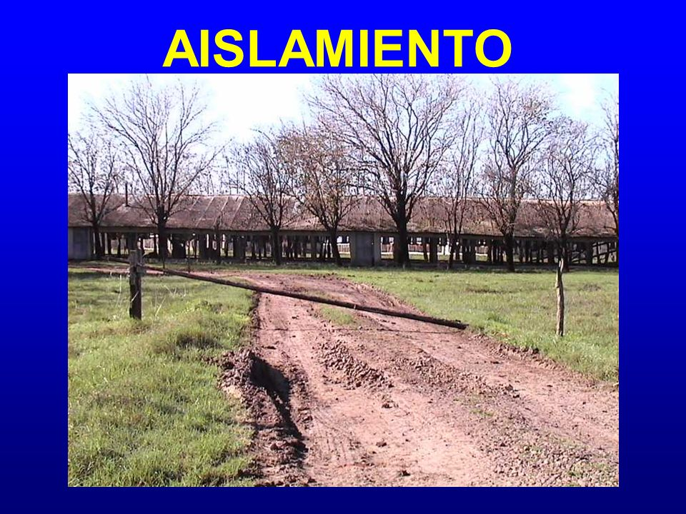 AISLAMIENTO