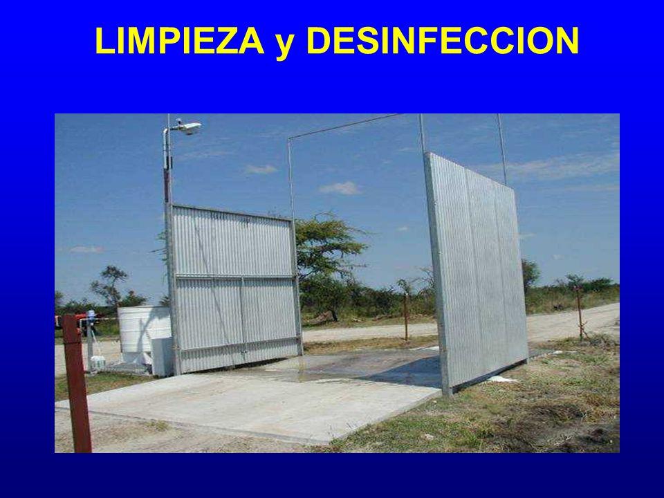 LIMPIEZA y DESINFECCION