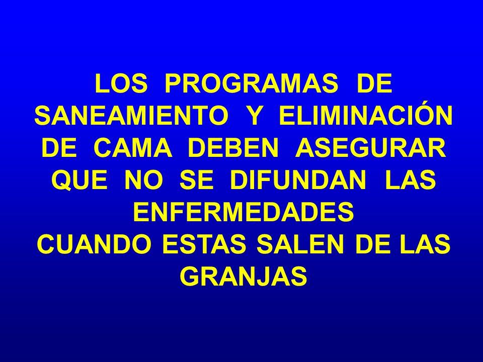 LOS PROGRAMAS DE SANEAMIENTO Y ELIMINACIÓN DE CAMA DEBEN ASEGURAR QUE NO SE DIFUNDAN LAS ENFERMEDADES CUANDO ESTAS SALEN DE LAS GRANJAS
