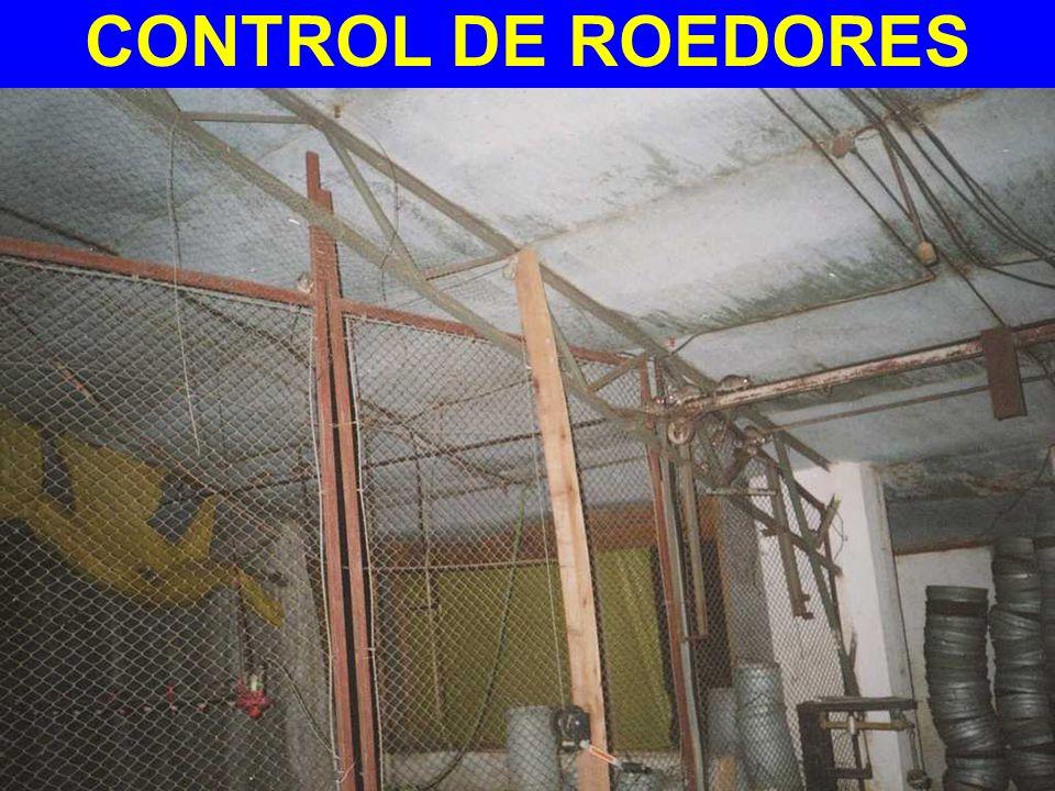 CONTROL DE ROEDORES