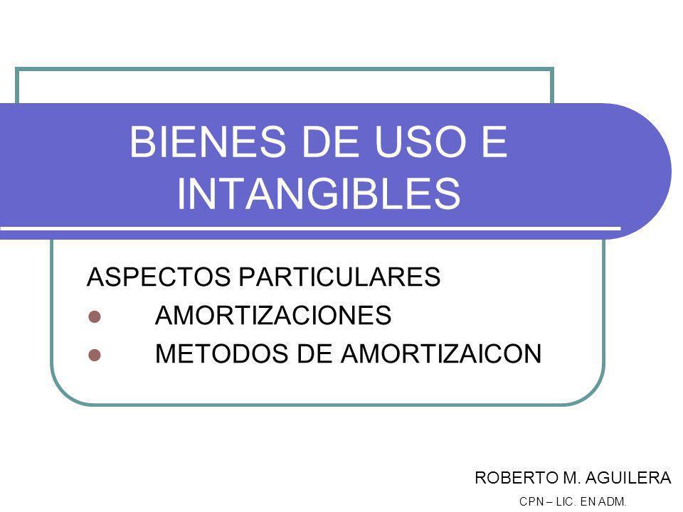 BIENES DE USO E INTANGIBLES
