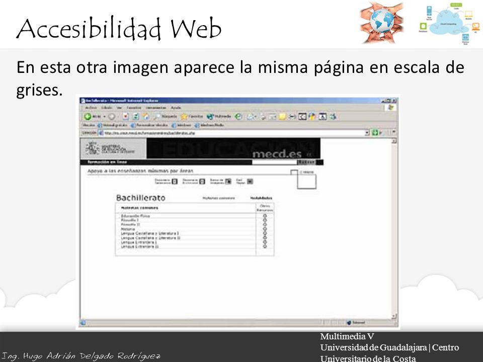 Accesibilidad Web En esta otra imagen aparece la misma página en escala de grises. Multimedia V.