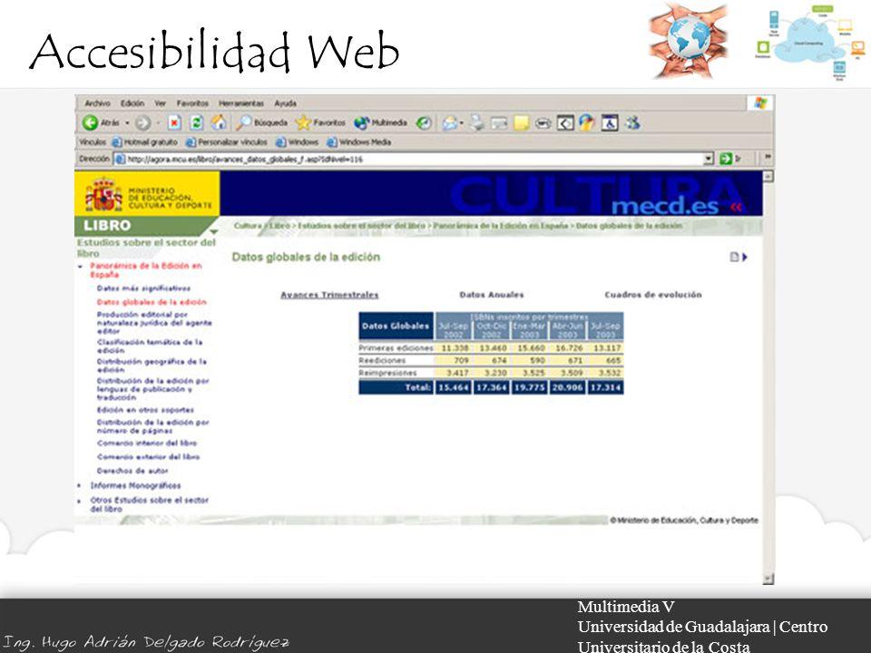 Accesibilidad Web Multimedia V