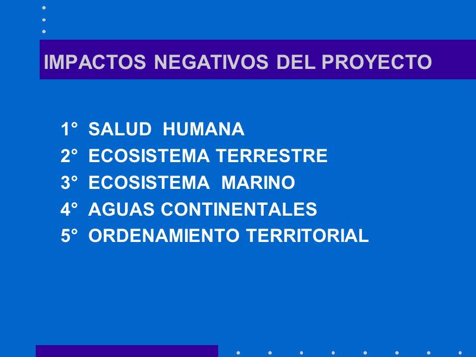 IMPACTOS NEGATIVOS DEL PROYECTO