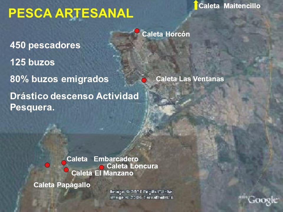 PESCA ARTESANAL 450 pescadores 125 buzos 80% buzos emigrados