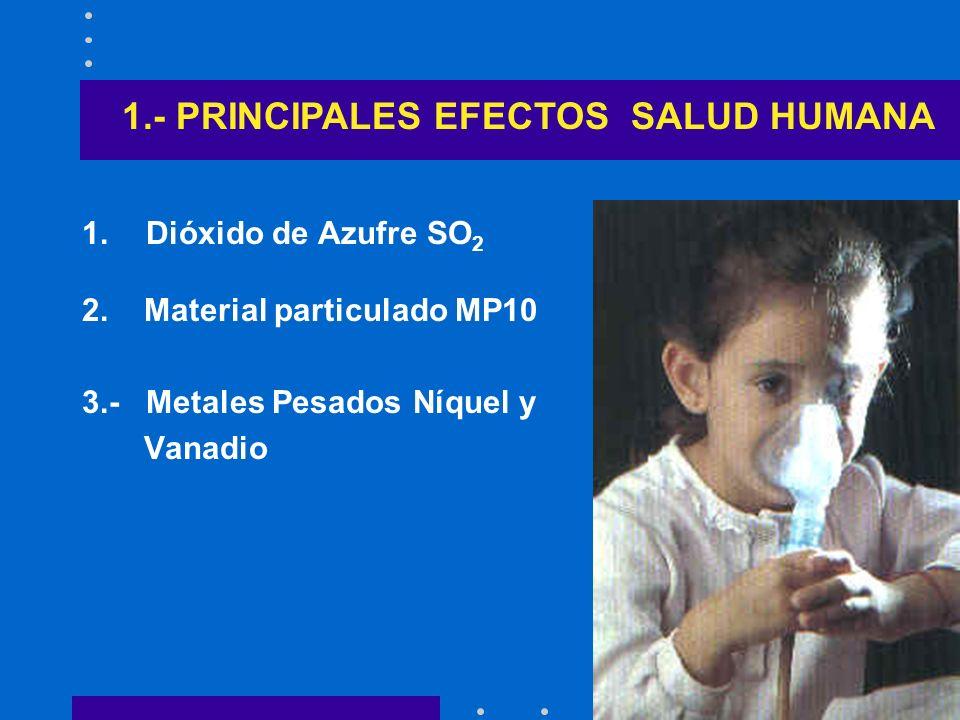 1.- PRINCIPALES EFECTOS SALUD HUMANA
