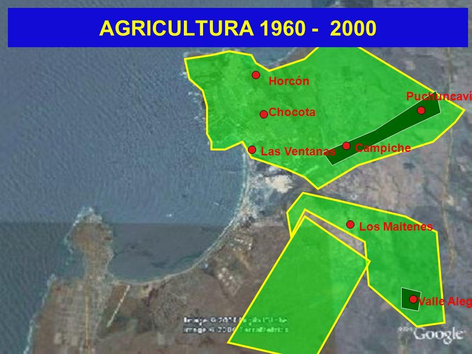 AGRICULTURA 1960 - 2000 Horcón Puchuncaví Chocota Campiche