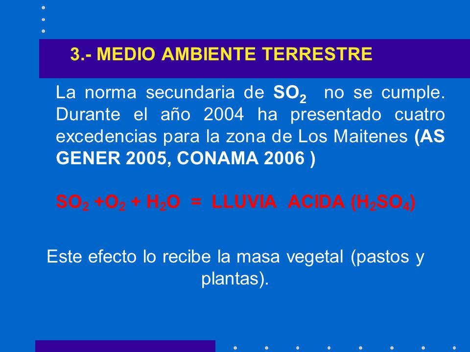 3.- MEDIO AMBIENTE TERRESTRE
