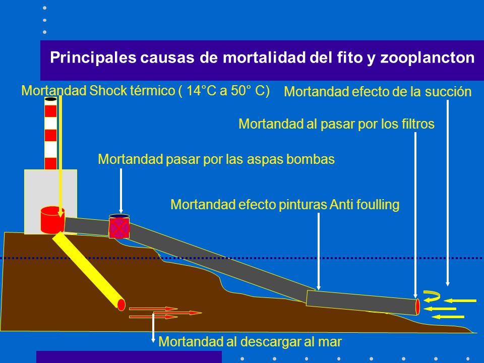 Principales causas de mortalidad del fito y zooplancton