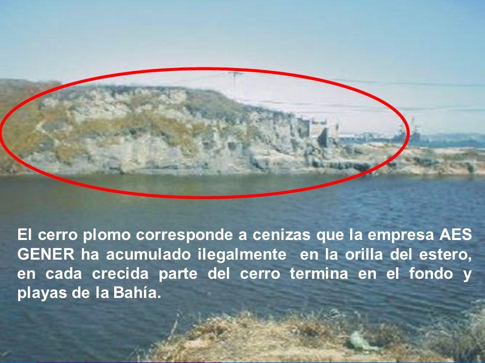 El cerro plomo corresponde a cenizas que la empresa AES GENER ha acumulado ilegalmente en la orilla del estero, en cada crecida parte del cerro termina en el fondo y playas de la Bahía.