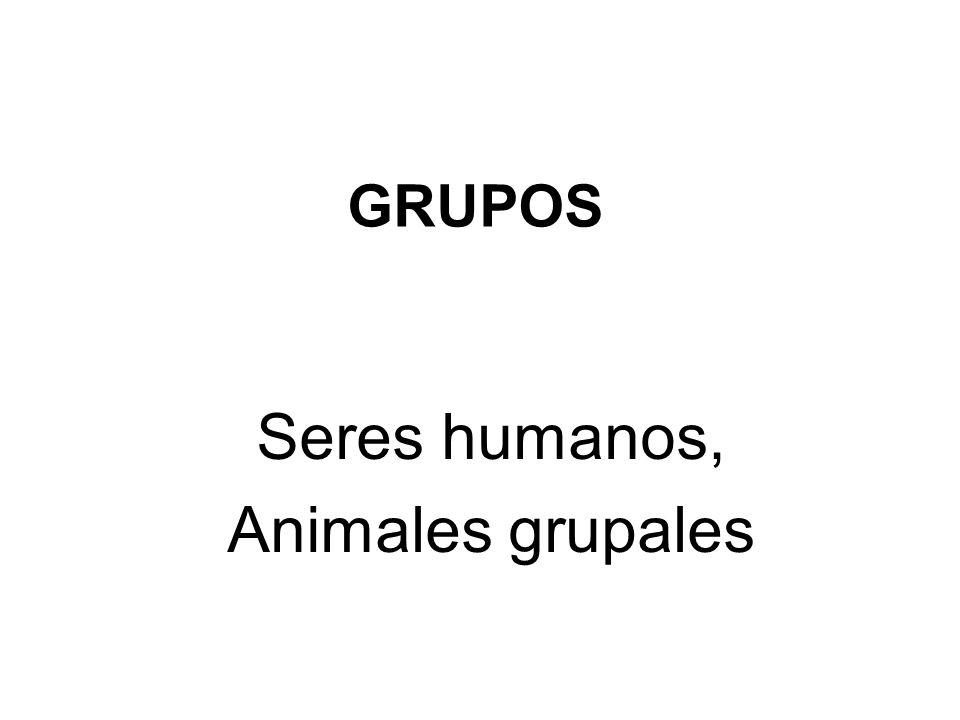 Seres humanos, Animales grupales