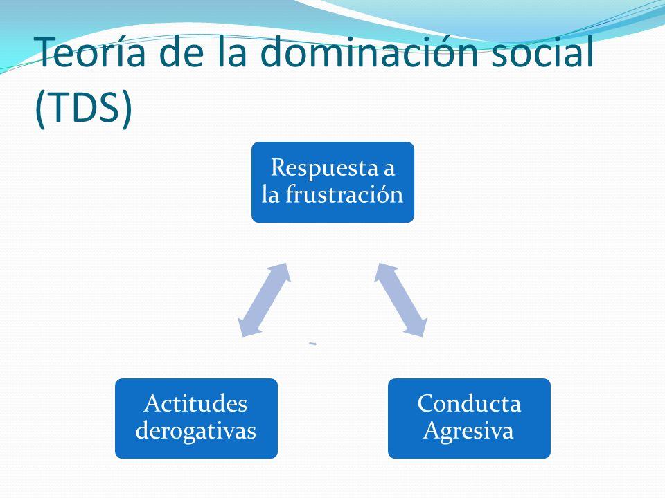 Teoría de la dominación social (TDS)