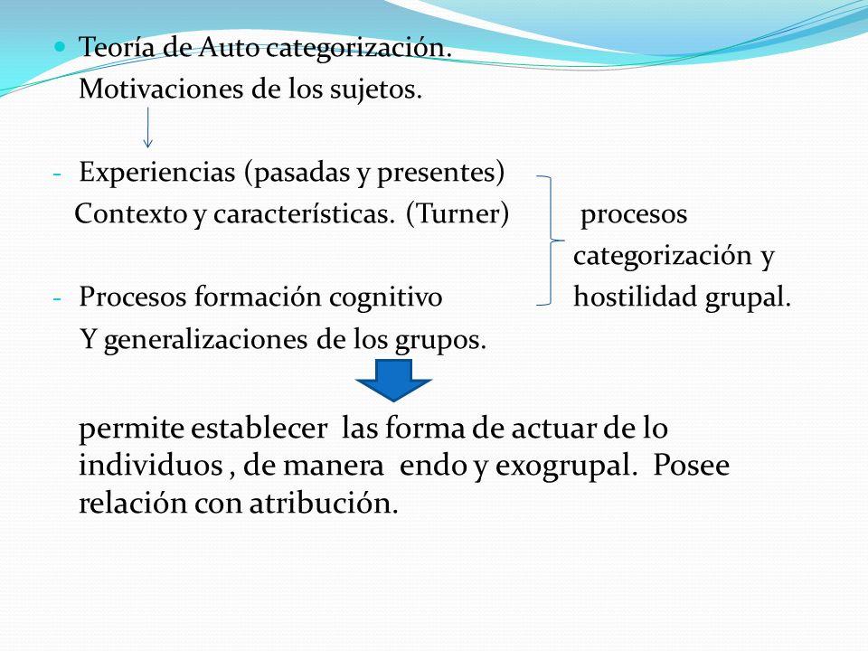 Teoría de Auto categorización.
