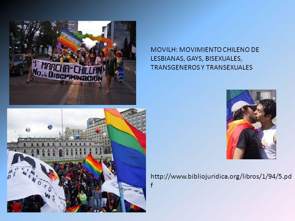MOVILH: MOVIMIENTO CHILENO DE LESBIANAS, GAYS, BISEXUALES, TRANSGENEROS Y TRANSEXUALES
