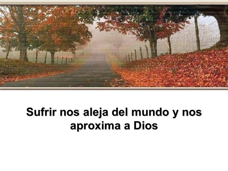 Sufrir nos aleja del mundo y nos aproxima a Dios