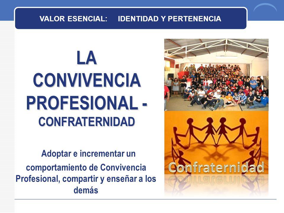CONVIVENCIA PROFESIONAL - CONFRATERNIDAD