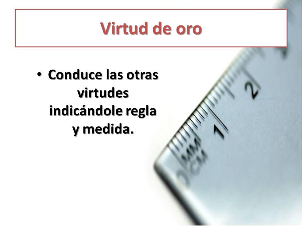 Conduce las otras virtudes indicándole regla y medida.