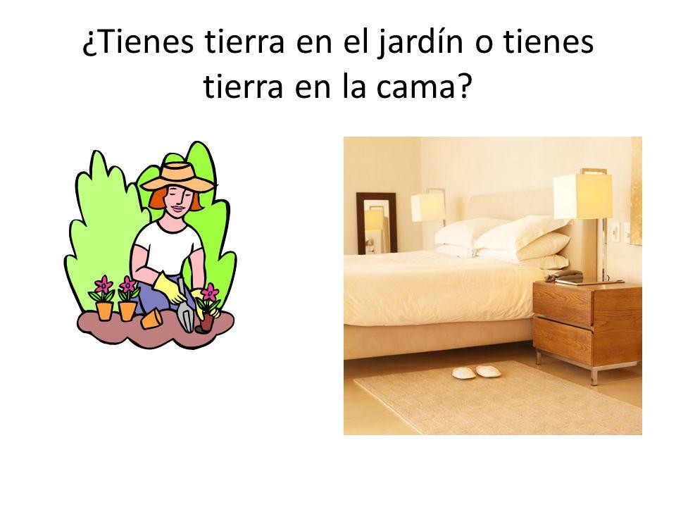¿Tienes tierra en el jardín o tienes tierra en la cama