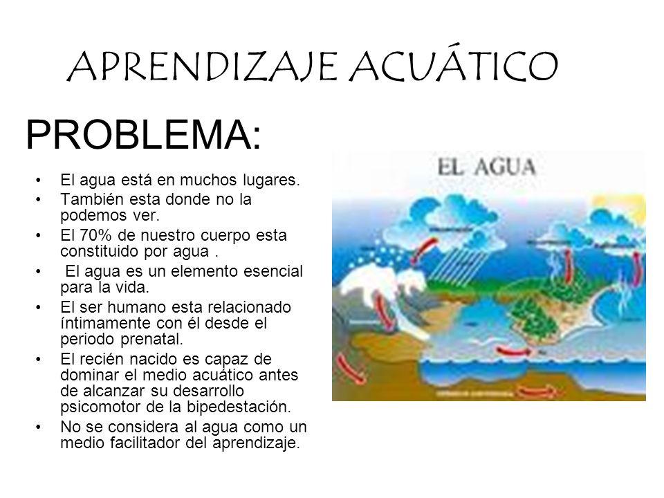 APRENDIZAJE ACUÁTICO PROBLEMA: El agua está en muchos lugares.
