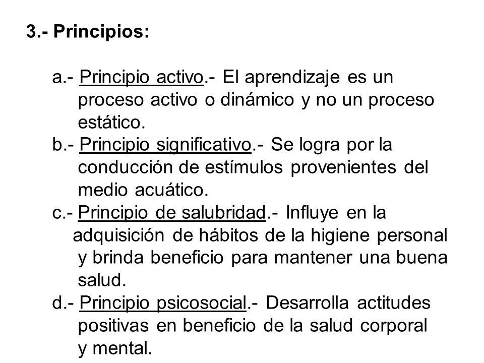 3. - Principios: a. - Principio activo