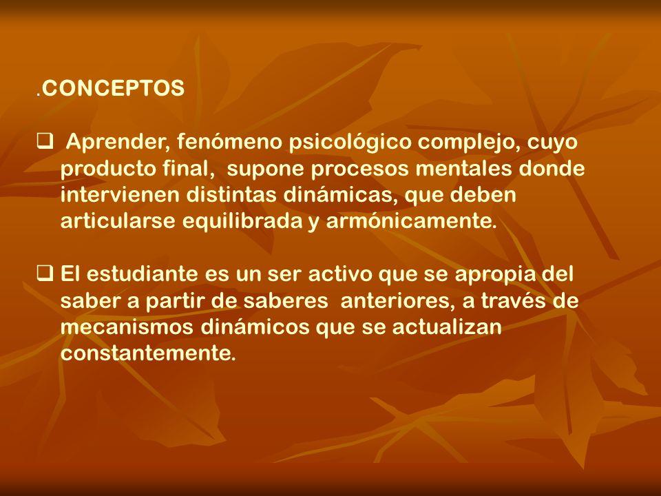 .CONCEPTOS