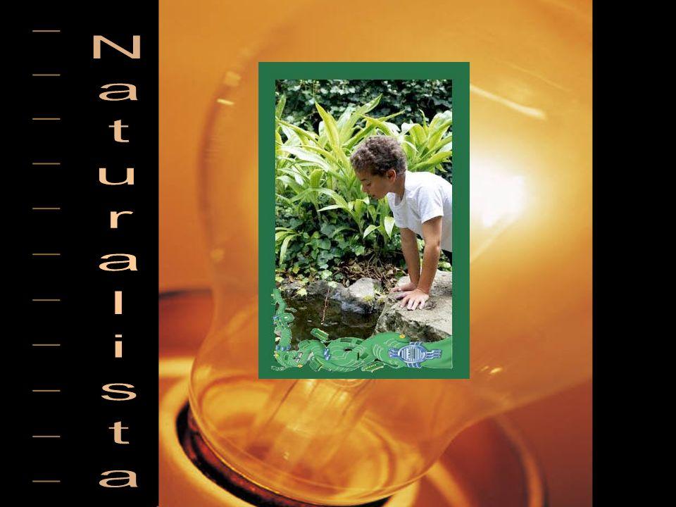 ___________ Naturalista