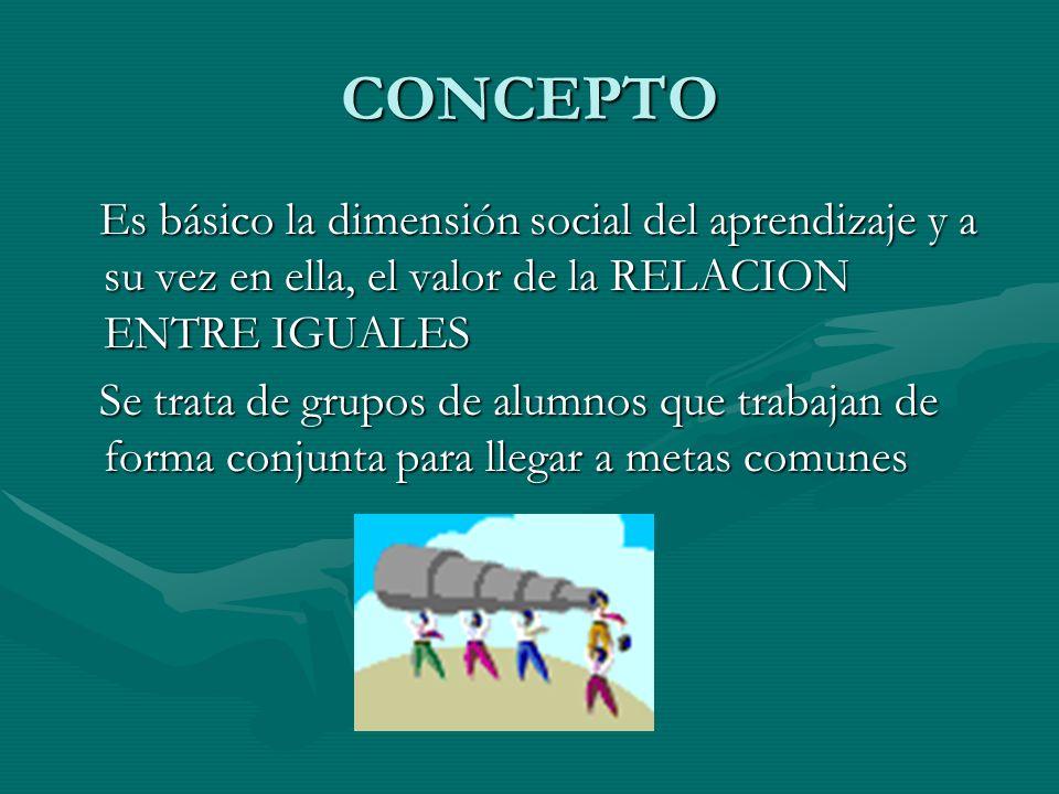 CONCEPTO Es básico la dimensión social del aprendizaje y a su vez en ella, el valor de la RELACION ENTRE IGUALES.