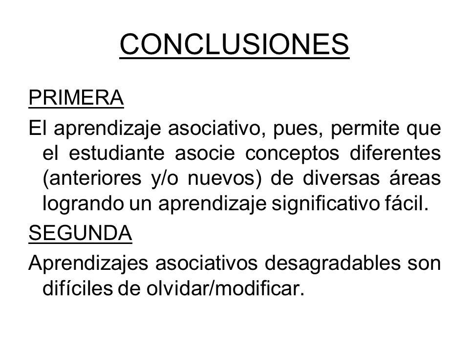 CONCLUSIONES PRIMERA.