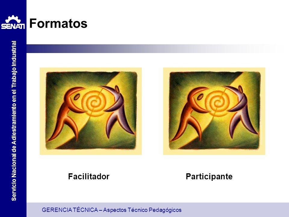 Formatos Facilitador Participante