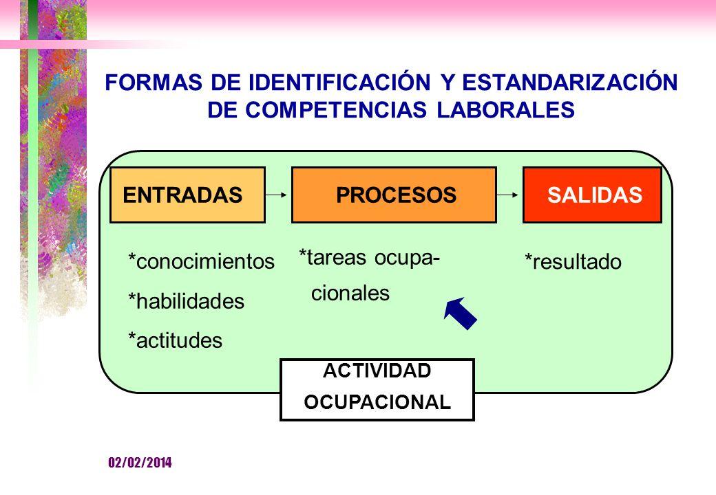 FORMAS DE IDENTIFICACIÓN Y ESTANDARIZACIÓN DE COMPETENCIAS LABORALES