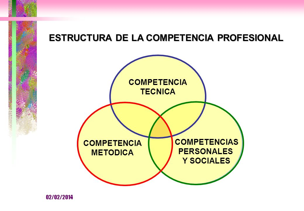 ESTRUCTURA DE LA COMPETENCIA PROFESIONAL