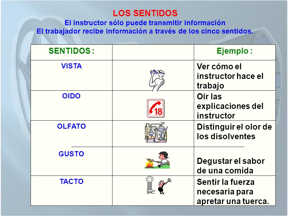 El trabajador recibe información a través de los cinco sentidos.
