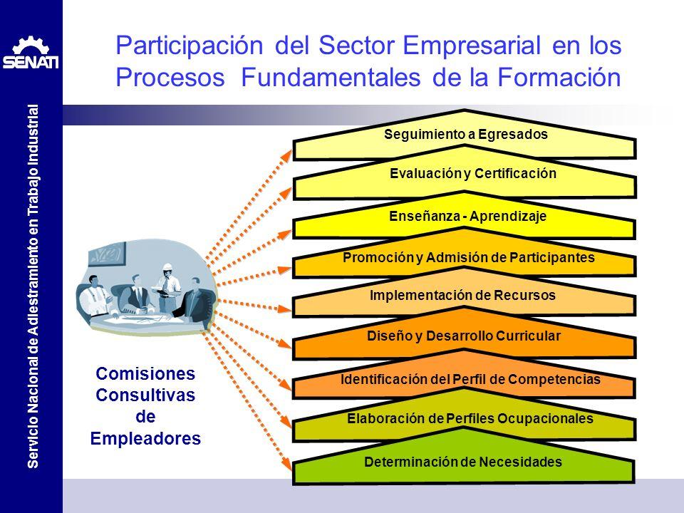 Participación del Sector Empresarial en los Procesos Fundamentales de la Formación