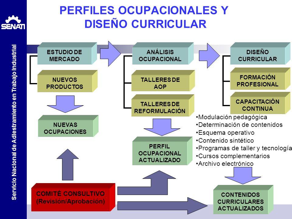 PERFILES OCUPACIONALES Y DISEÑO CURRICULAR