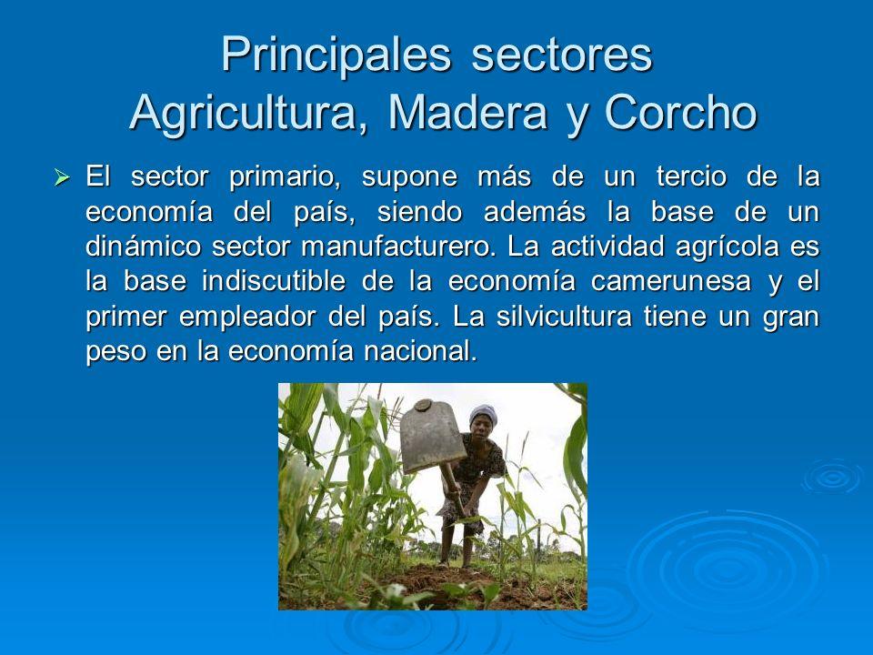 Principales sectores Agricultura, Madera y Corcho