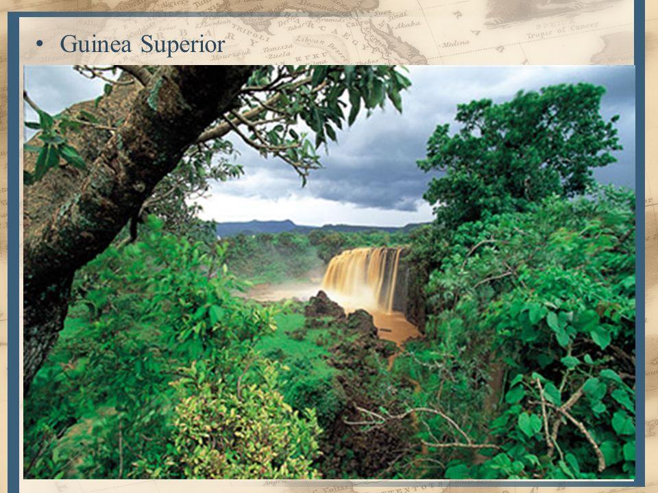 Guinea Superior Guinea Inferior