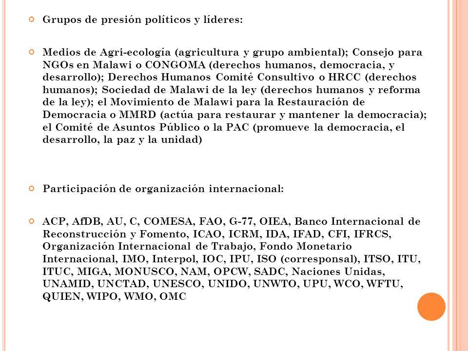 Grupos de presión políticos y líderes: