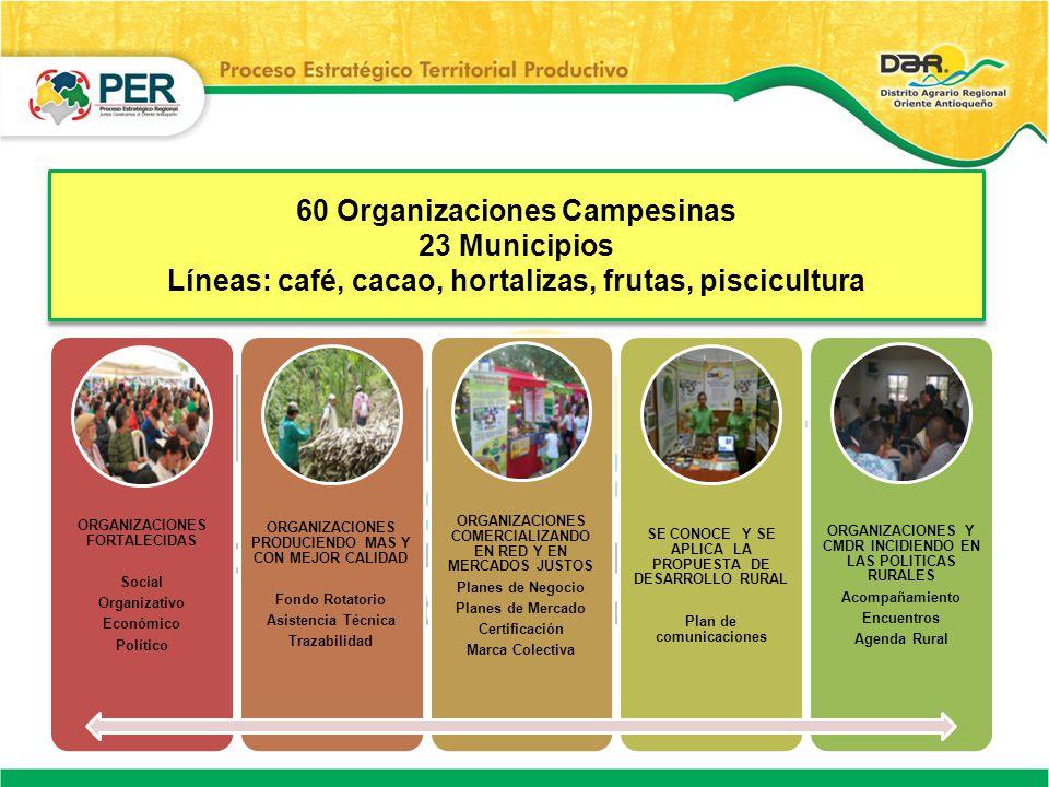 60 Organizaciones Campesinas 23 Municipios