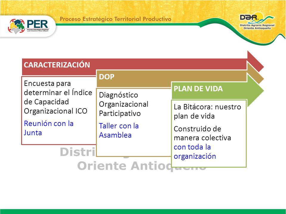 CARACTERIZACIÓN Encuesta para determinar el Índice de Capacidad Organizacional ICO. Reunión con la Junta.