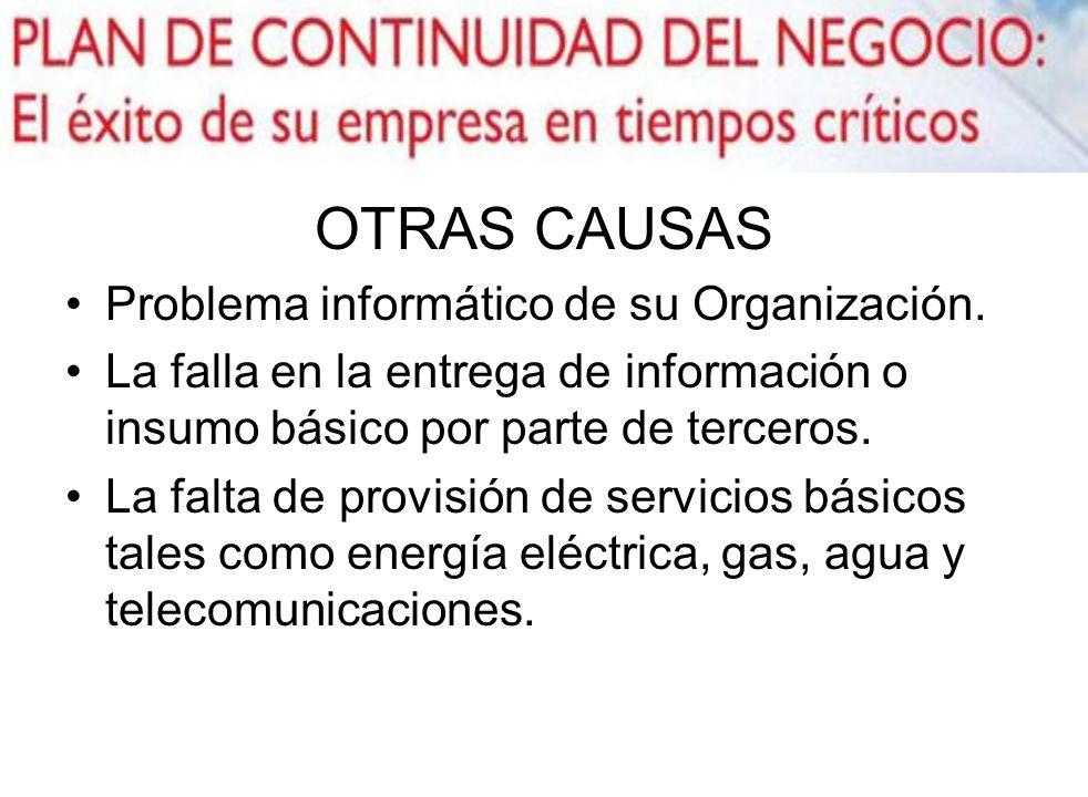 OTRAS CAUSAS Problema informático de su Organización.