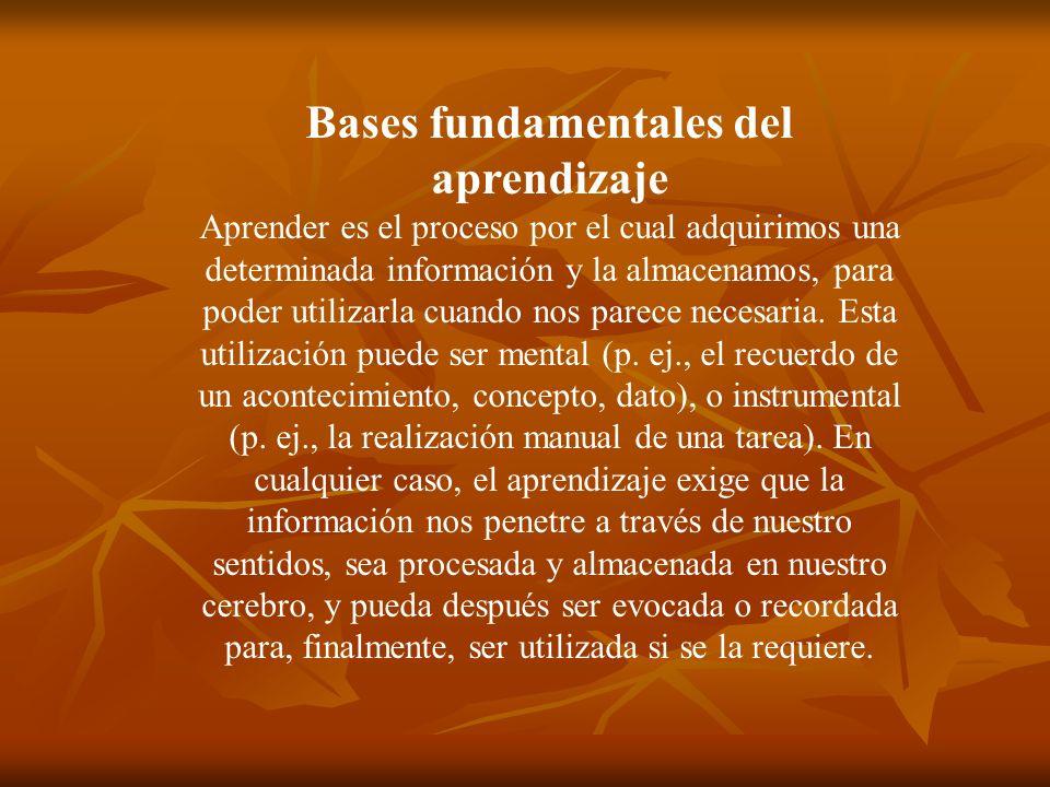 Bases fundamentales del aprendizaje