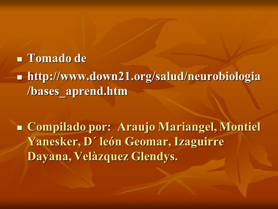 Tomado dehttp://www.down21.org/salud/neurobiologia/bases_aprend.htm.