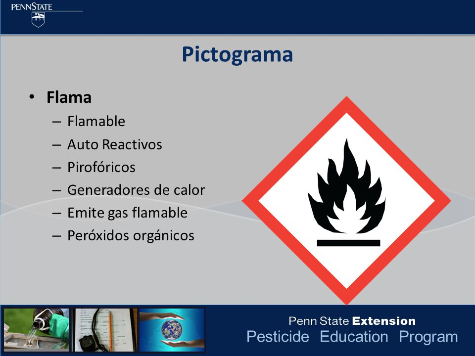 Pictograma Flama Flamable Auto Reactivos Pirofóricos